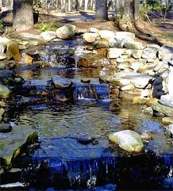 Stream pond waterfall