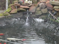 waterfall into pond